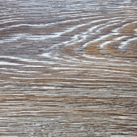 TRAF_1174 Kalahari Oak