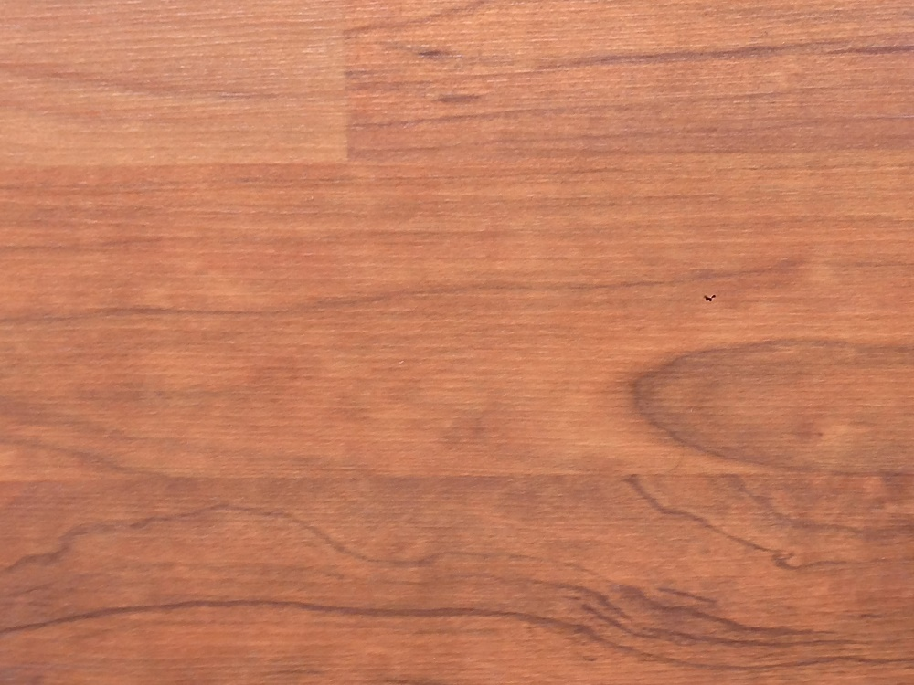 Best quality laminate flooring euro rayjees flooring for Quality laminate flooring