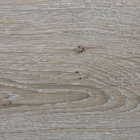 EURO 4V_1053 Silver Ash Oak