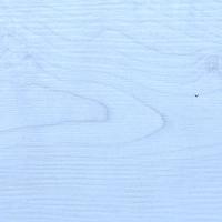 EXE_1309 White Maple