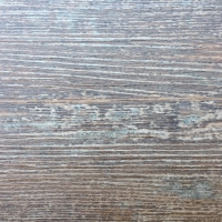 EXC_1206 Country Oak