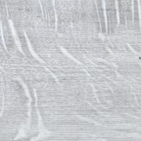 TRIO_Arctic.JPG